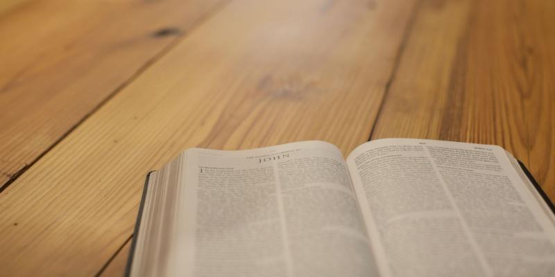 author biblical text