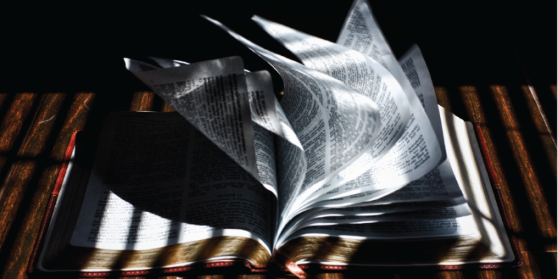 Interpreting The Bible As Christiansthe Supernatural Word Prince